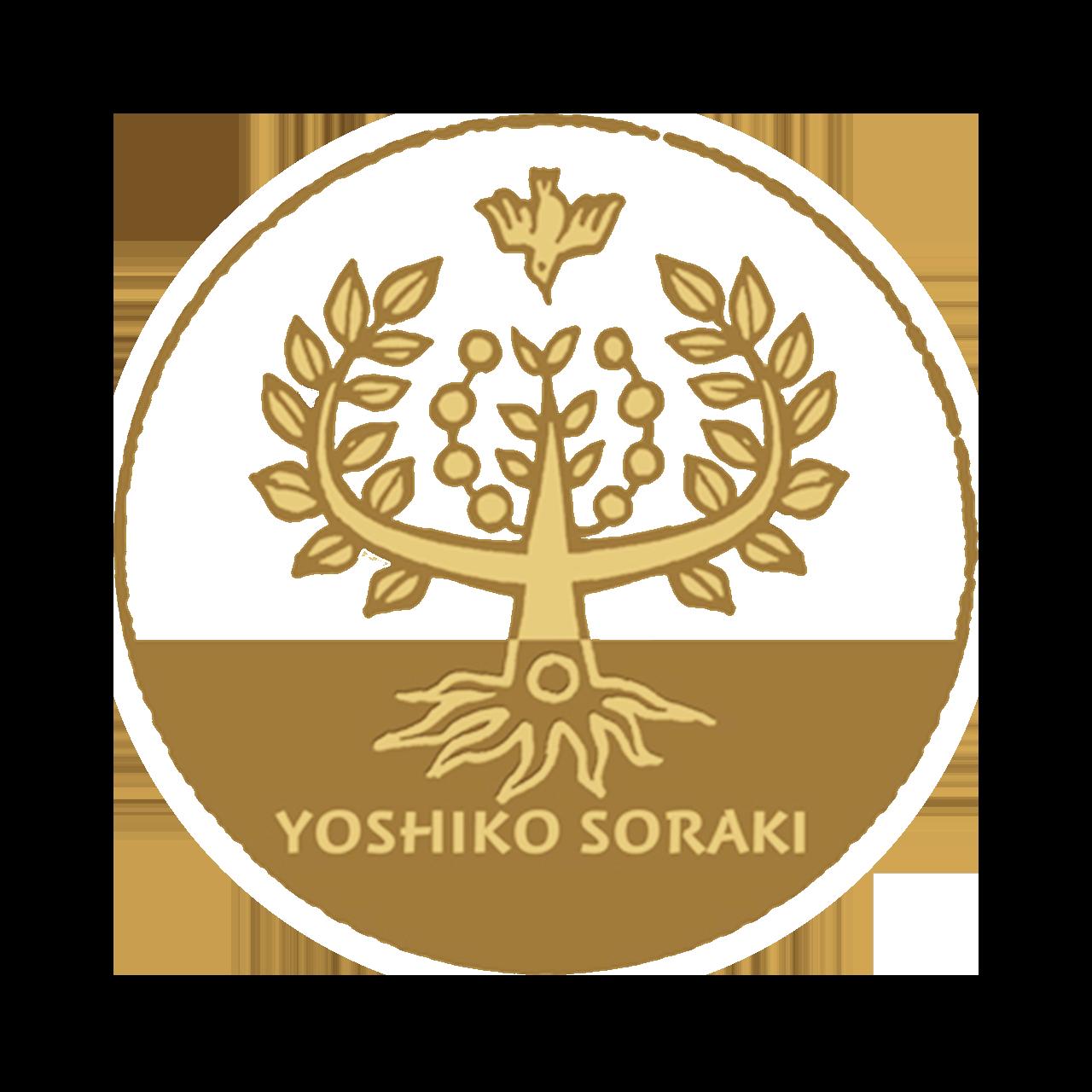 soraki_image_logo